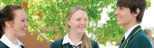 Macarthur Anglican School Header